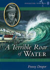 A Terrible Roar of Water by Penny Draper (Paperback / softback, 2009)