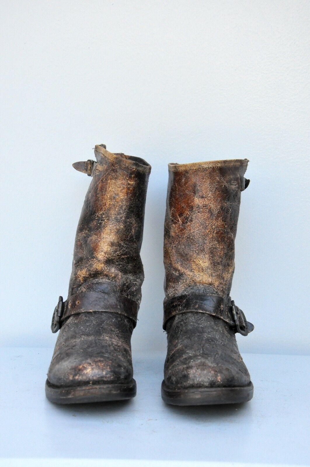FRYE Veronica DISTRESSED Mid Calf Short Short Short Stiefel Moto Engineer Chocolate braun 7 B 71c9a2
