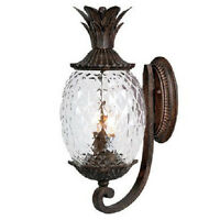 Pineapple Wall Sconce 2 Bulb Lamp Etch Glass Hall Entry Way Light Fixture Black