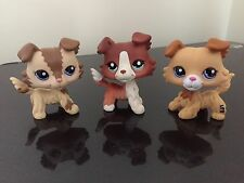 3 Littlest Pet Shop Rare LPS Figure Collie Dog Collection #2210 #1542 #2452 NICE