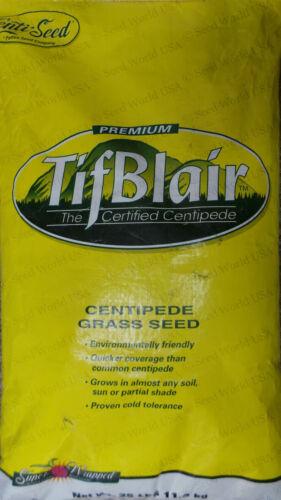 Certified Tifblair Centipede Grass Seed 25 Lbs.