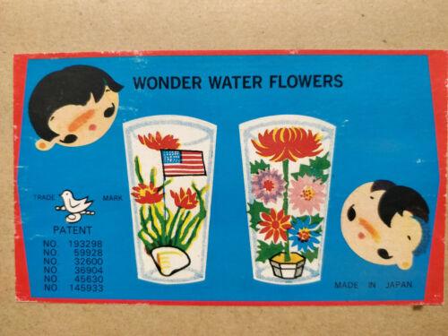 Vintage Wonder shell water flowers
