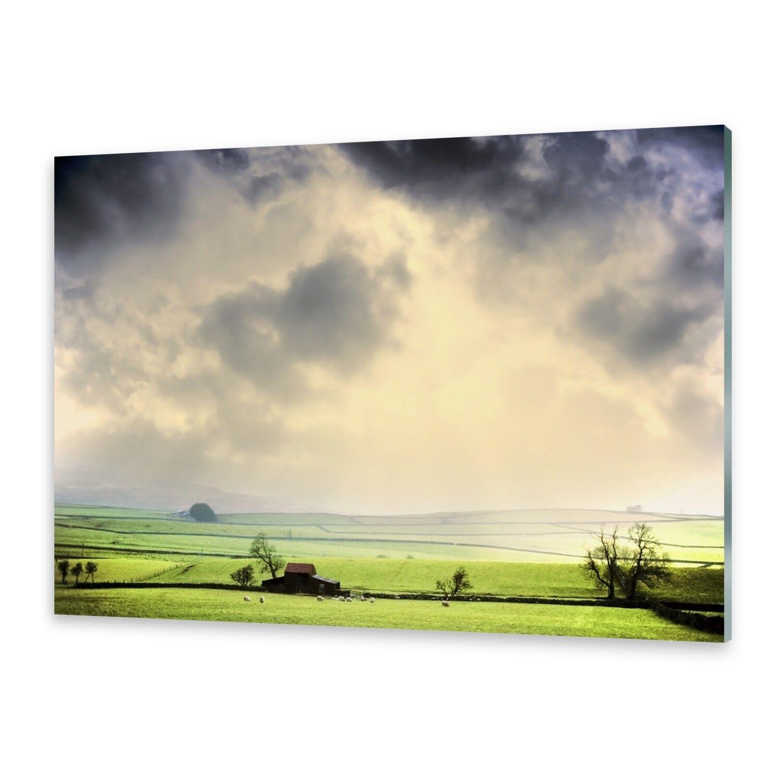 Vetro acrilico immagini Muro Immagine da plexiglas ® campi immagine