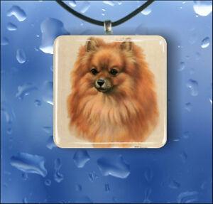 DOG-POMERANIAN-GLASS-PENDANT-NECKLACE