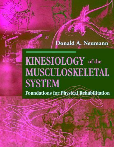 Kinesiology of the musculoskeletal system foundations for physical resntentobalflowflowcomponenttechnicalissues fandeluxe Image collections