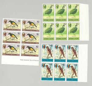 Sierra Leone #464, 469, 470 Birds 3v Imperf Blocks of 6
