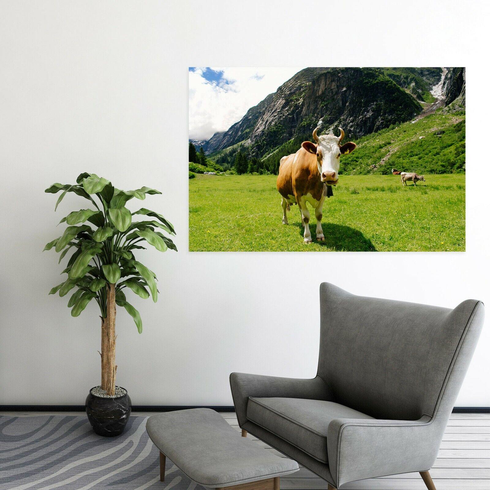 3D Ranch Cattle Sunshine P40 Animal Wall Stickers Vinyl Wallpaper Mural Wall Zoe