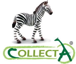 Figurine-Zebre-Bebe-Animaux-Sauvages-Statue-de-Collection-Jouets-Collecta-88168