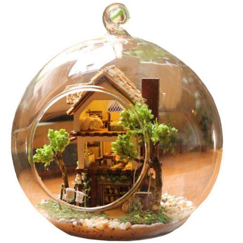 Hágalo usted mismo Handcraft Miniatura proyecto Casa De Muñecas Luces islas Forest Adventure Kit