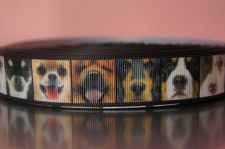 webband grosgrain cenefa 2300 diferentes perros 6 22mm ancho propios de producción