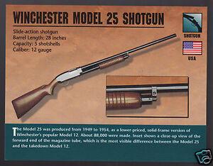 12 gauge shotgun winchester Winchester 12