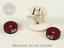 Pyrkol-Wound-Tracker-Dials-for-Warhammer-40k-Space-Marines-Terrain-Tau-Dice-Alt miniature 10