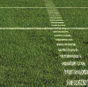 12x12 scrapbook paper football grass gridline touchdown sports ebay