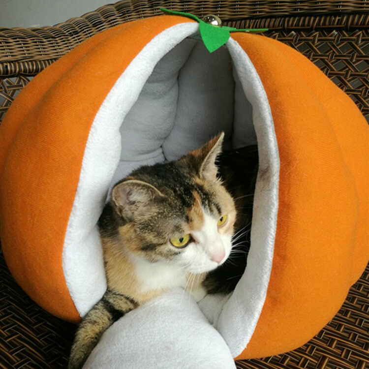 Pumkin Extra Small Dog Beds Covers Warm Puppy Cat Mouse Bed Doggy Sleeping House