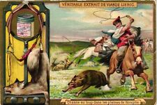 6 Cards c1895 sports Game Hunting Wolf Hunting Tiger Hunting Bear ELEPHANT litho