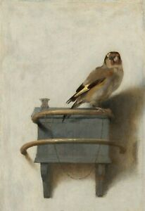 The-Goldfinch-by-Carel-Fabritius-CANVAS-PICTURE-PRINT-FRAMED-24X18-INCH