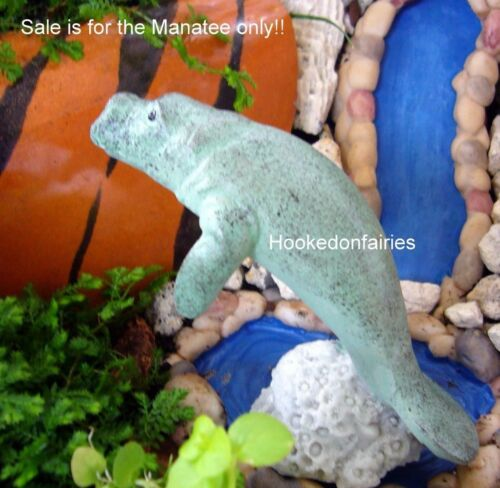 Miniature  Manatee LS MN100  Fairy Garden  Terrarium