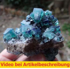 7438-Fluorit-UV-ca-6-8-8-cm-daylight-fluorescence-Rogerley-Mine-GB-2014-MOVIE