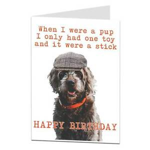 Funny happy birthday card from dog theme joke humour for owner lover image is loading funny happy birthday card from dog theme joke bookmarktalkfo Images