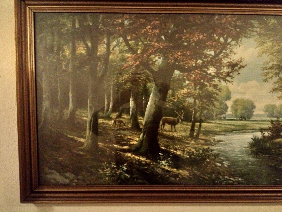 Tryk, Kronhjort, motiv: Kronhjort i skovbryn