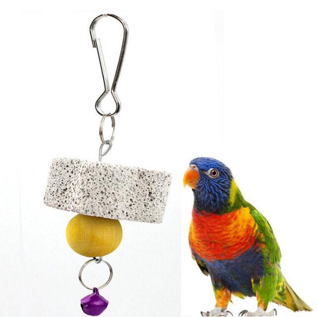 Parrot Bird Squirel Chew Bite Scratcher Bell Toy Teeth Grinding Parakeet Toy  ~