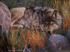 Jigsaw Puzzle Animal Wild Wolf One to One 1000 pieces NEW
