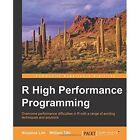 R High Performance Programming by William Tjhi, Aloysius Lim (Paperback, 2015)