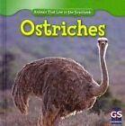 Ostriches by Therese Harasymiw (Hardback, 2010)