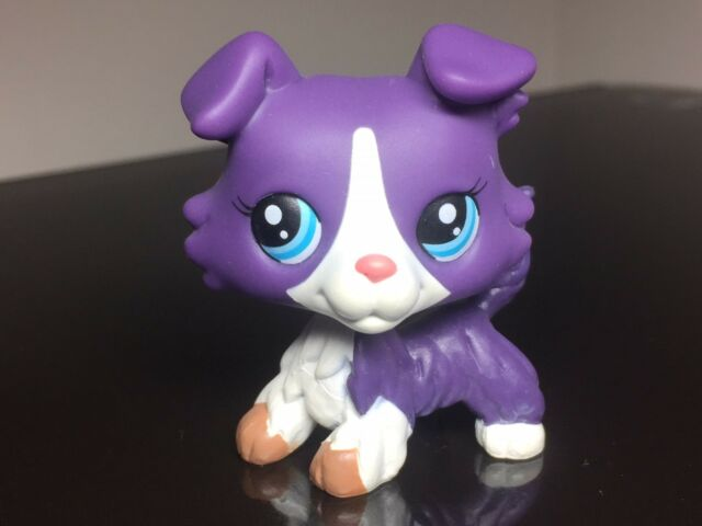 Littlest Pet Shop LPS#1676 Purple White Collie Dog w//3 Accessories