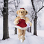 Annette-Funicello-Let-It-Snow-Ballerina-Bear-15-034-Scrapbook-Bears-Collection thumbnail 2