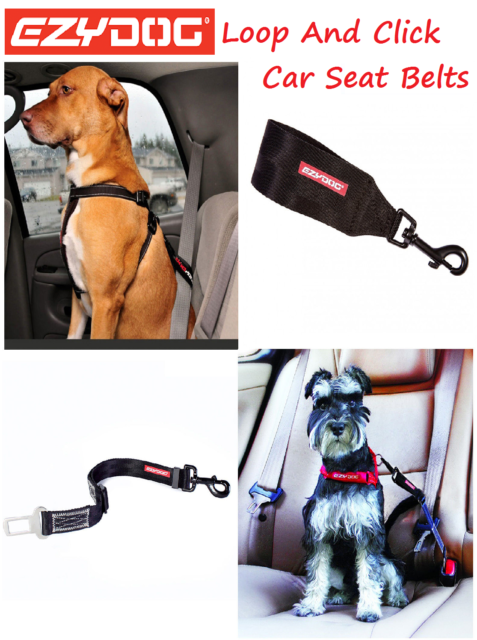 EZYDOG - Choice Of Loop Or Click Dog Car Seat Belt Restraints