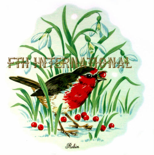 2 sizes to choose from berries grass B108 ~ English Red Robin on Ceramic Decals