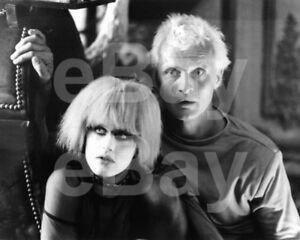 Blade-Runner-1982-Daryl-Hannah-Rutger-Hauer-10x8-Photo