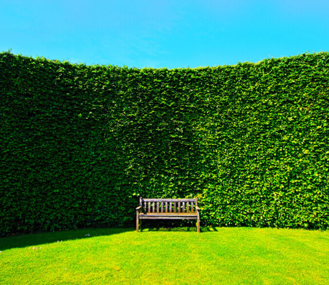 3D Green Space 1 Wall Paper Wall Print Decal Wall Deco Indoor Wall Murals Wall