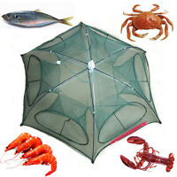 Fish Shrimp Minnow Dip Cage Foldable Fishing Trap Crab Cast Mesh Baits Net