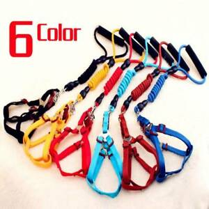 Dog-Harness-and-Leash-Set-for-Small-Medium-Large-Dogs-Durable-Nylon-Rope-6-Color