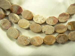 8 fosilizado Coral Flat Oval cuentas 25mm # 79030