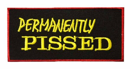 WORD SPEECH Iron Sew On Patch FUNNY TEXT Aufbügler Embroid Applique Dirty Quote