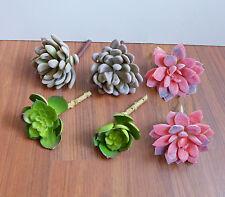 Artificial Desert Succulents Plants Set of 6 (Autumn Snowball)