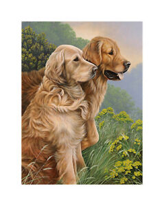 Nigel-Hemming-GOOD-AS-GOLD-SMALL-Golden-Retrievers-Goldies-Gun-Dog-Forest-Art