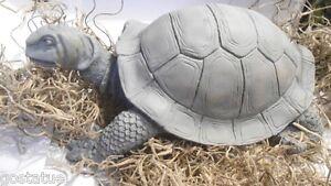 new latex w plastic backup sea turtle slightly turned head mold..mould molds