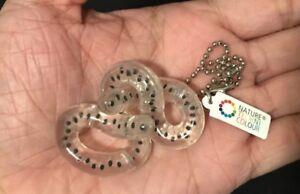Kitan Club Nature Techni Colour Frog Toad Eggs Key Chain Bag Strap Figure Ebay