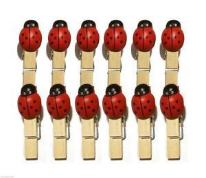 MINI-esegue-il-pegging-in-legno-coccinella-esegue-il-pegging-hand-painted-3cm-CLOTHES-Peg-legno