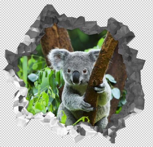 3D Koala tree 626 Wall Murals Stickers Decal breakthrough AJ WALLPAPER AU Lemon