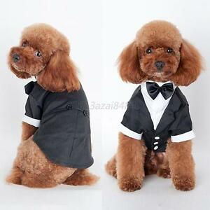 Pet-Costumes-Small-Dog-Clothing-Prince-Wedding-Cat-Suit-Bow-Tie-Puppy-Tuxedo-A29