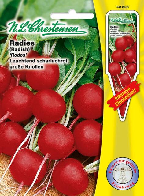 Radies 'Rodos ' leuchtend scharlachrot große Knollen  Samen 40528