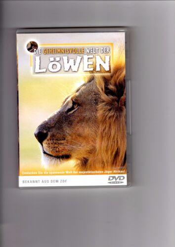 1 von 1 - Die geheimnisvolle Welt der Löwen (2004) DVD #13596
