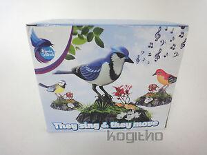 NUEVO-Embalaje-wundervogel-Ella-Singen-Y-mover-Sich-Sonidos-Sounds-Gesang
