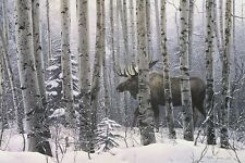 A Walk in the Woods Stephen Lyman Moose Winter Tree Forest Print Poster 44x32