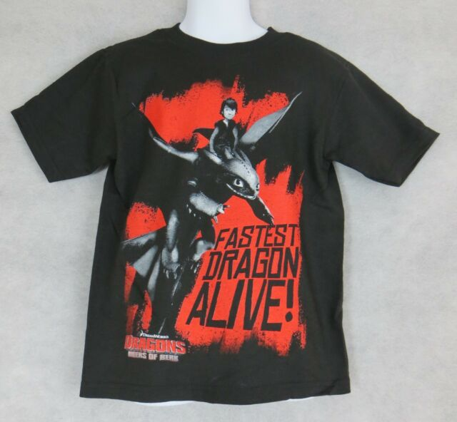 09e1b824230 Boy's Size 4 How to Train Your Dragon T-Shirt Fastest Dragon Alive New NWT